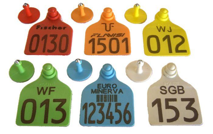 Caixa com 200 Cj Brinco Grande Bovino Personalizado (Nome, logomarca, desenho) para Manejo de Gado e Macho com Ponta Metalica