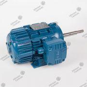 MOTOR 0,75CV 3F 60Hz - HLD40028A