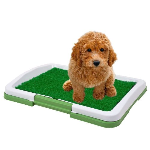 Sanitario_Canino_Puppy_Potty_Pad_grama_artificial_CBR01119_01