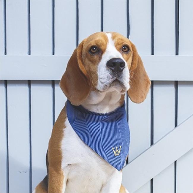 Bandana para cachorros Woof Classic ~ Petite Sofie