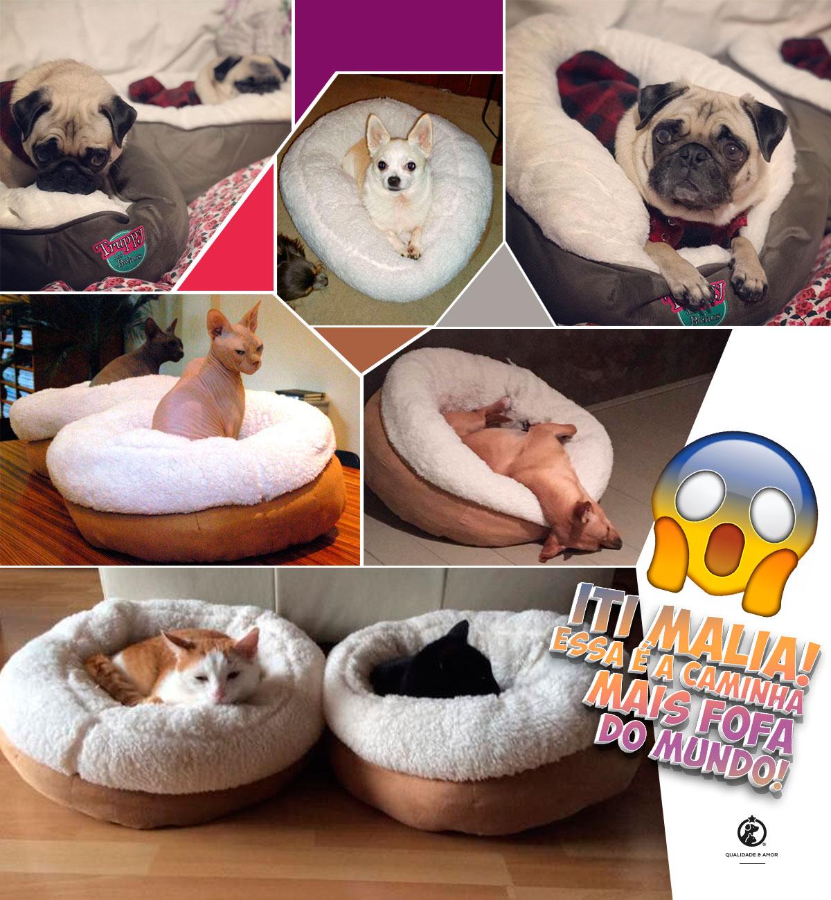 Compre a Caminha Pet Donut na Petite Sofie