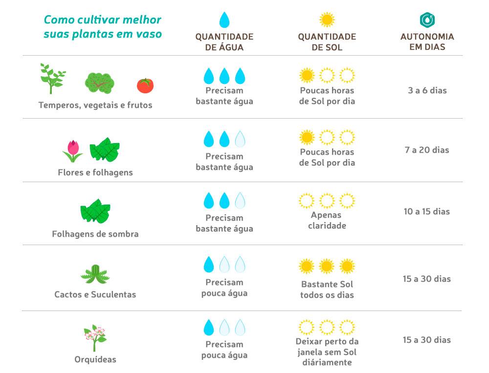 Tabela de dicas como cultivar plantas em vasos auto irrigavéis RAIZ
