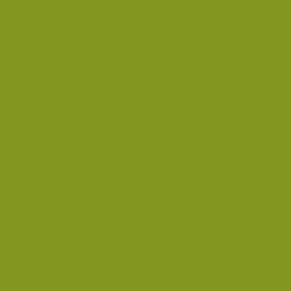 Fabricart Coleção Basics & Colors - Liso Grama TT - 50cm X150cm