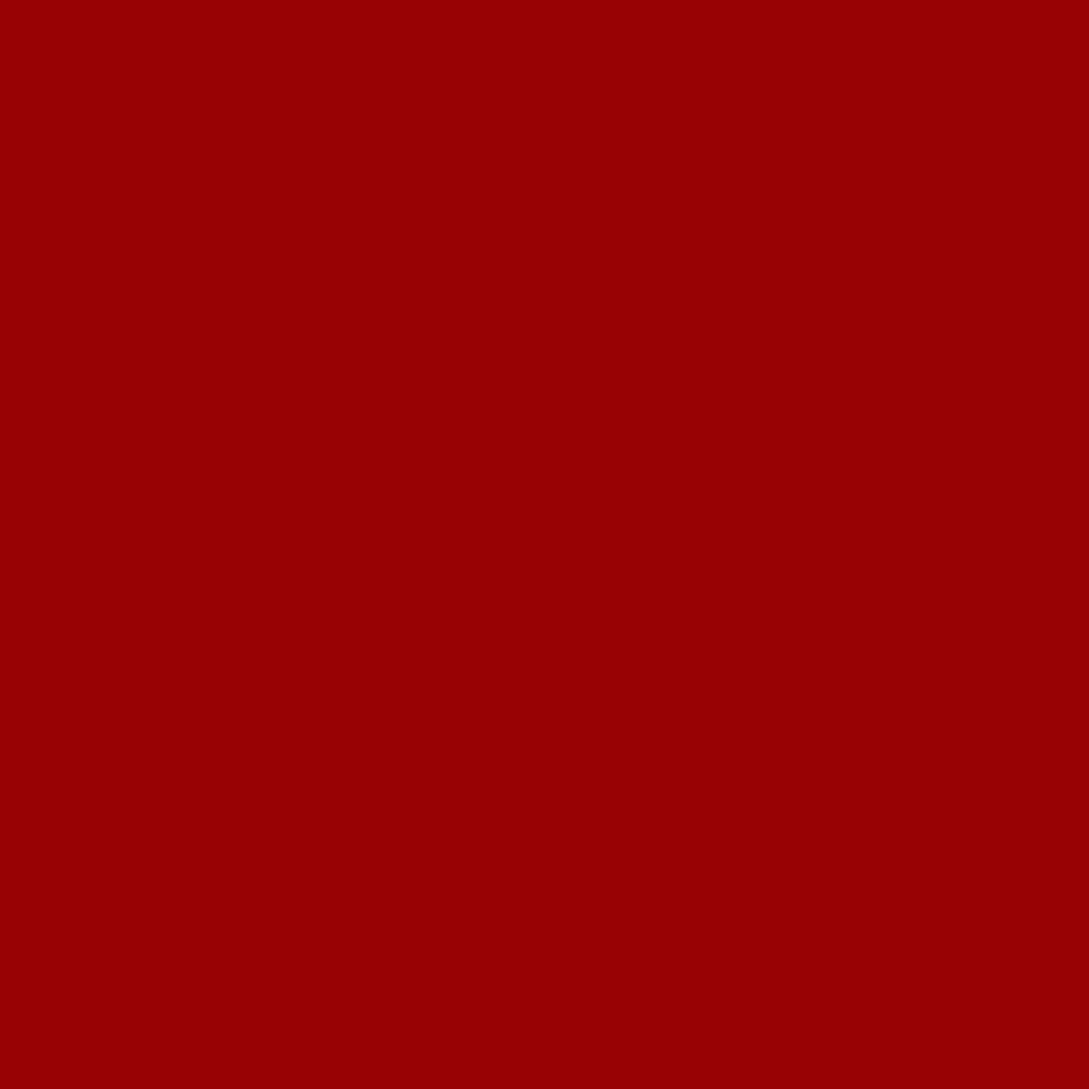 Fabricart Coleção Basics & Colors - Liso Tijolo TT - 50cm X150cm