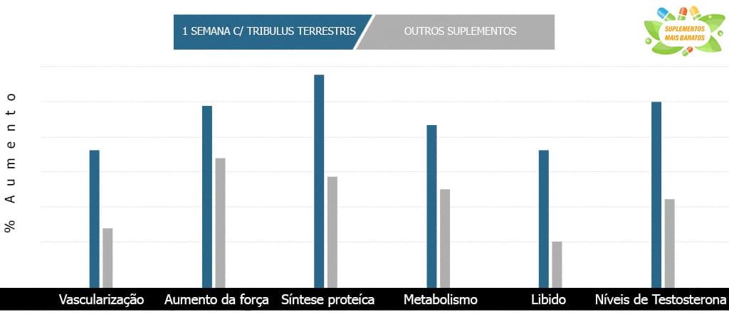 resultados Tribulus Terrestris antes e depois