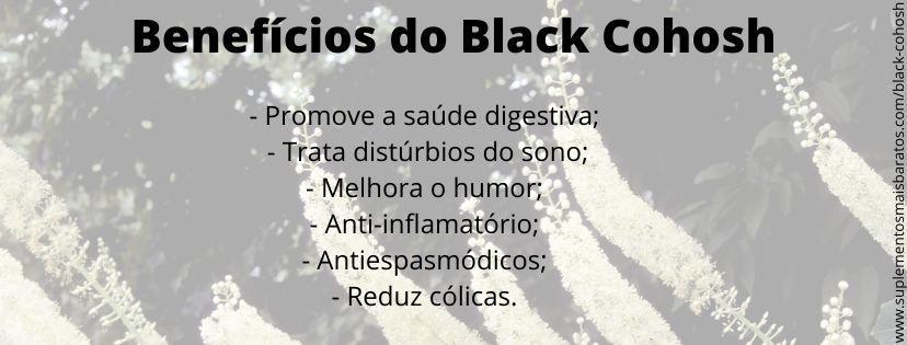 Beneficios da Black Cohosh e como tomar