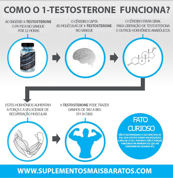 Como funiona 1-Testosterone Hi Tech