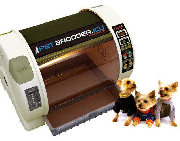 Pet Brooder - Pequeno