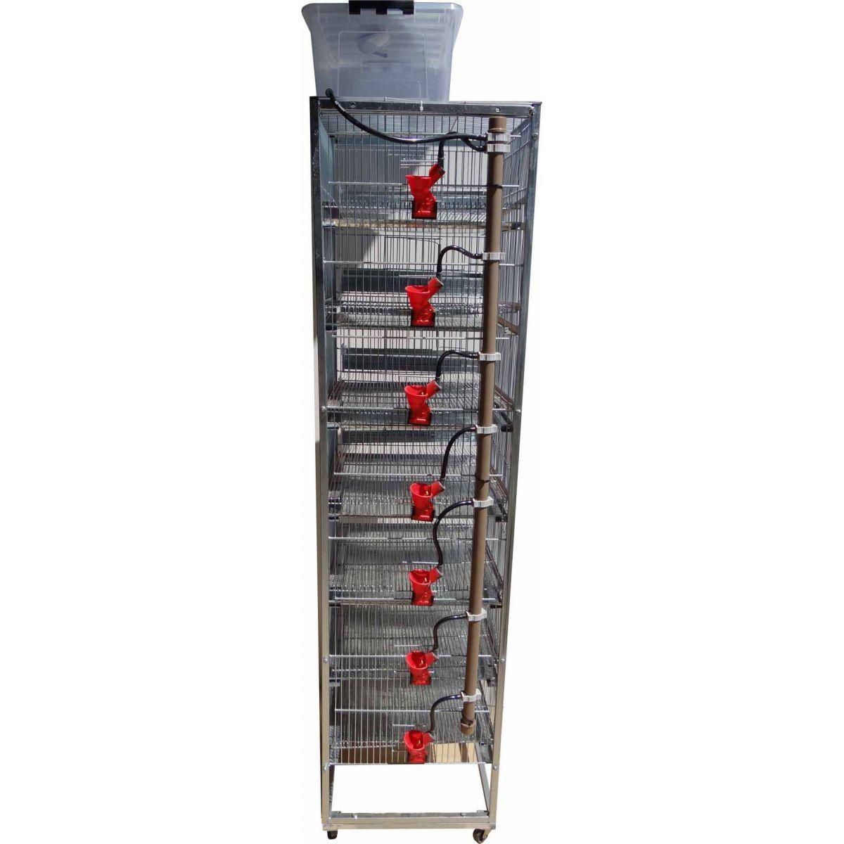 Bateria de 7 gaiolas para codorna chinesa