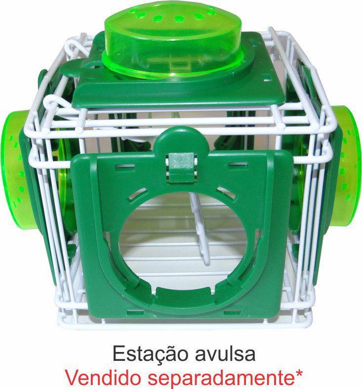 Tubo avulso Transparente Para gaiola de Hamster   - Chocmaster a melhor chocadeira do Brasil