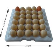 Kit Com 5 Bandejas de ovos