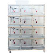 Bateria gaiola com 12 gaiolas para galinha