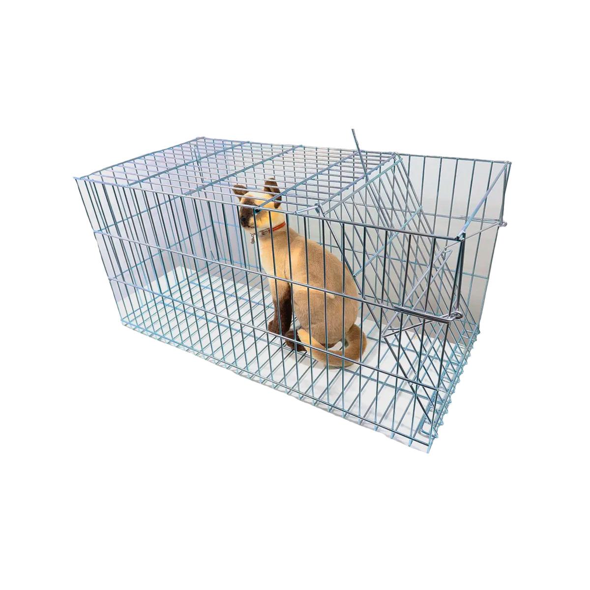 Armadilha gatoeira para gatos gambás e  diversos animais
