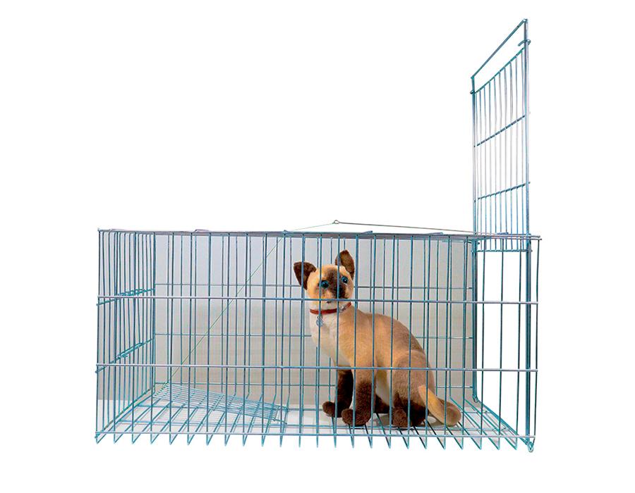Armadilha Pombos gambás gatos e animais de pequeno porte