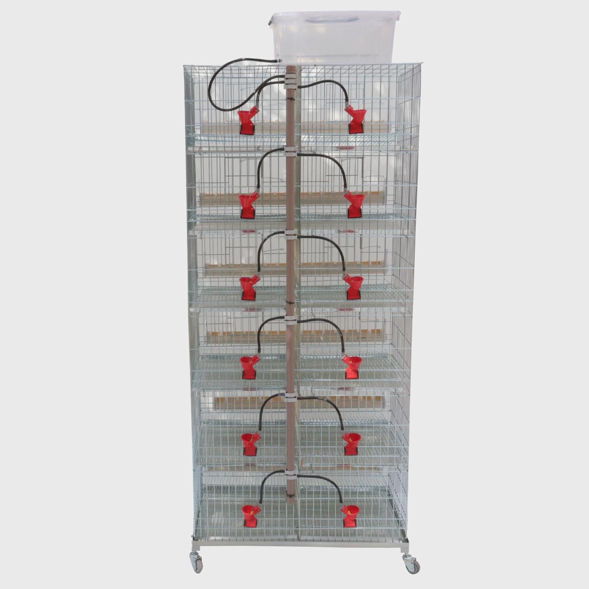 Bateria de 12 gaiolas para codorna