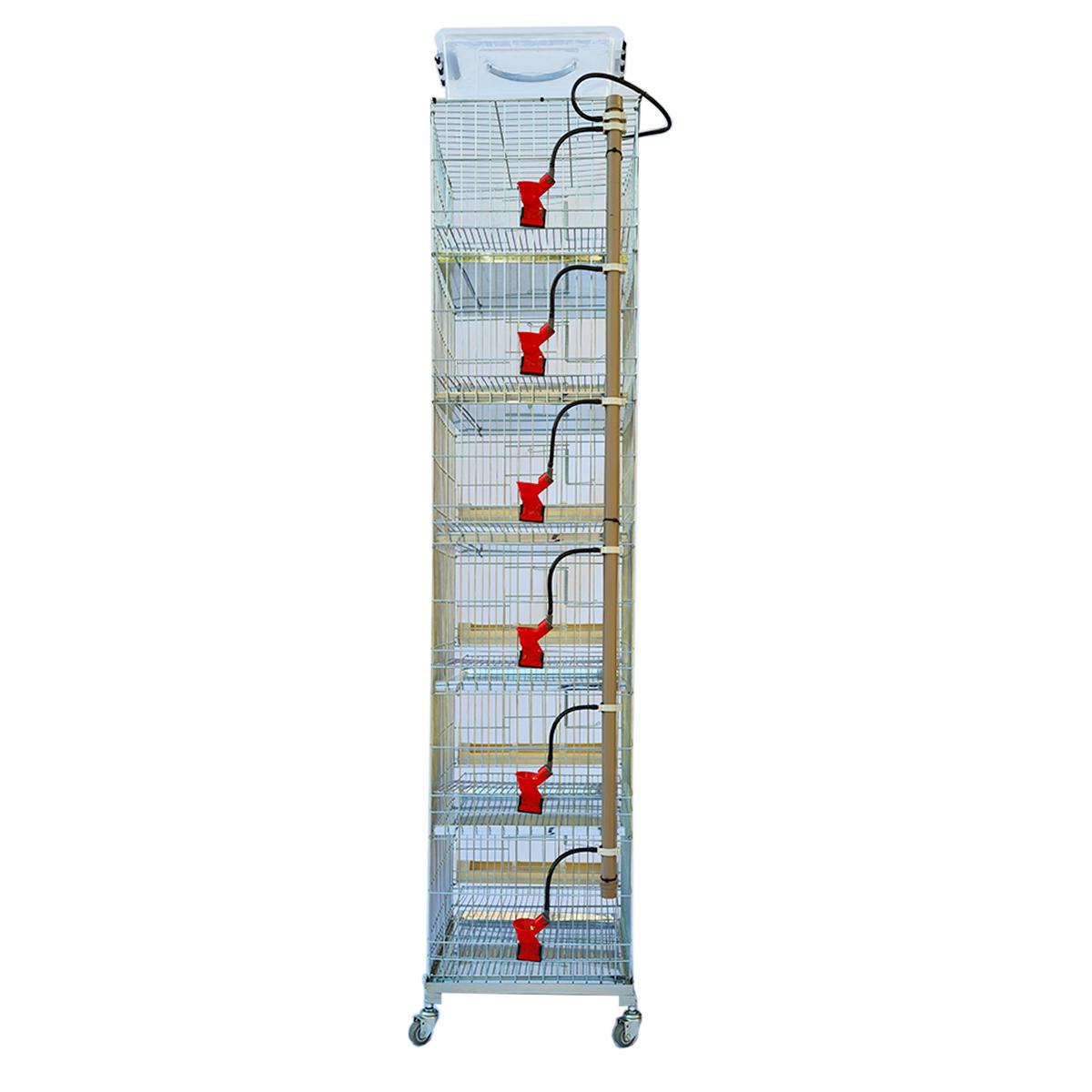 Bateria de 6 gaiolas para codorna