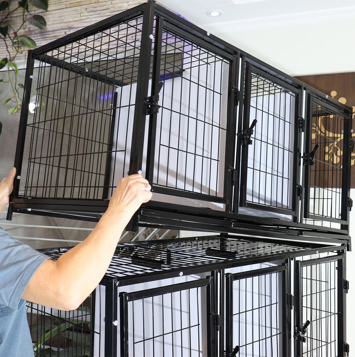 Canil Gatil 9 Lugares MODULAR Banho E Tosa Pet Shop Veterinária-Preto