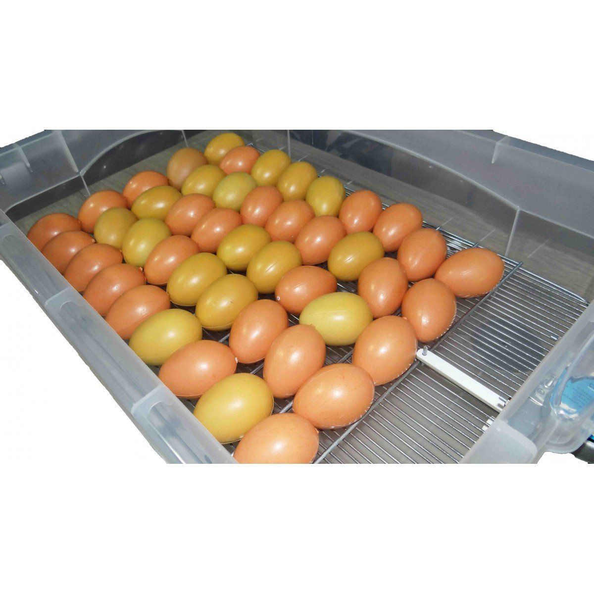 Chocadeira automática 54 ovos