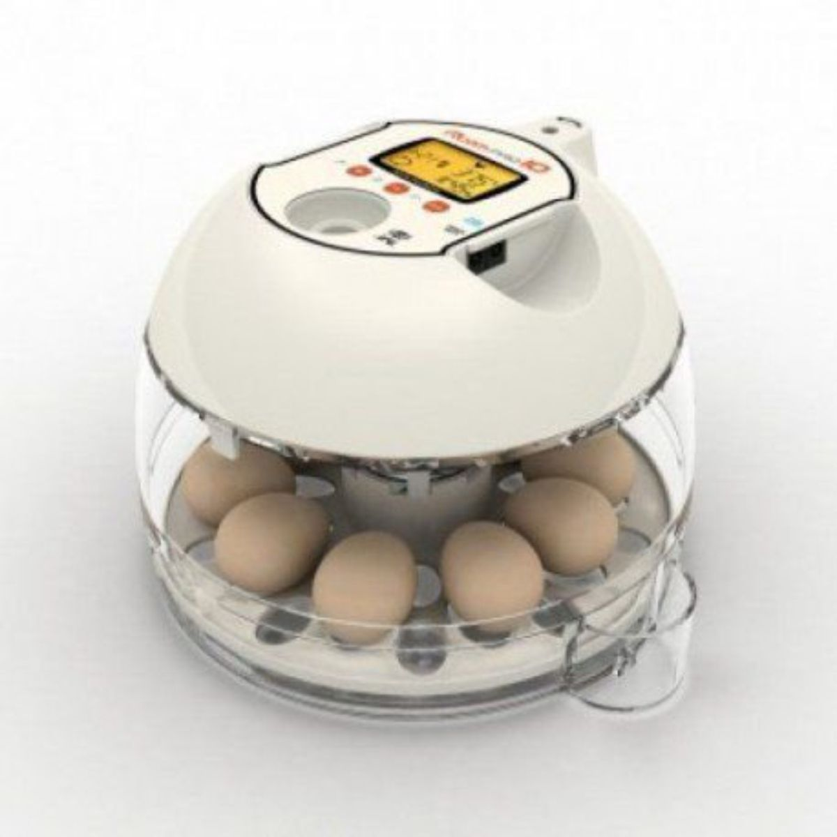 Chocadeira passaros com ovoscópio 10 ovos