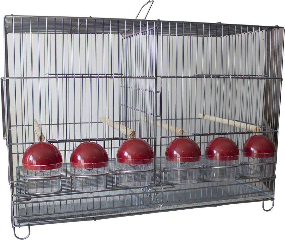Gaiola Criadeira voadeira reprodução  canário - Luxo  - Chocmaster a melhor chocadeira do Brasil