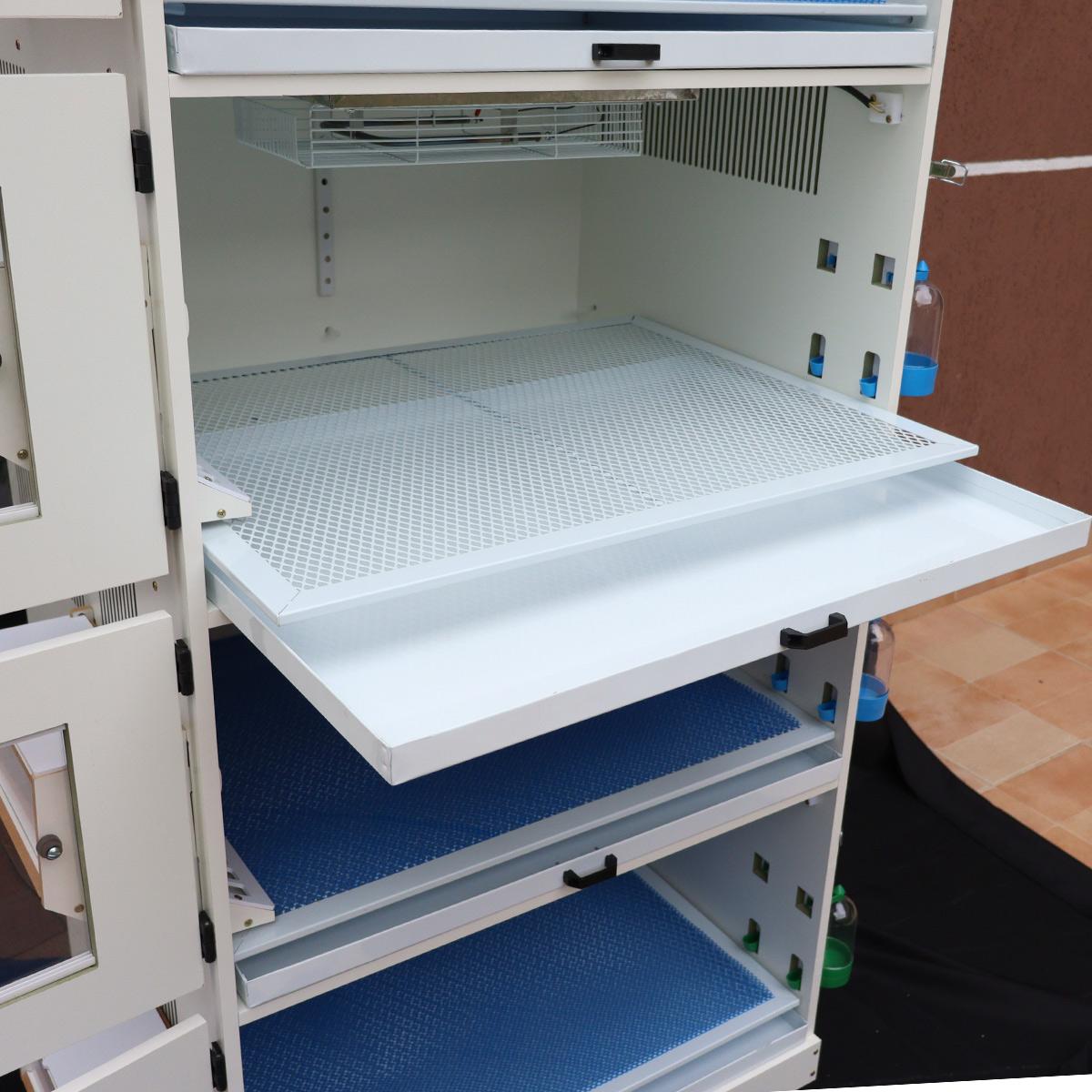 Criadeira Para Pintinhos com aquecimento digital De Faisão, Codorna, Pavão 4 Andares