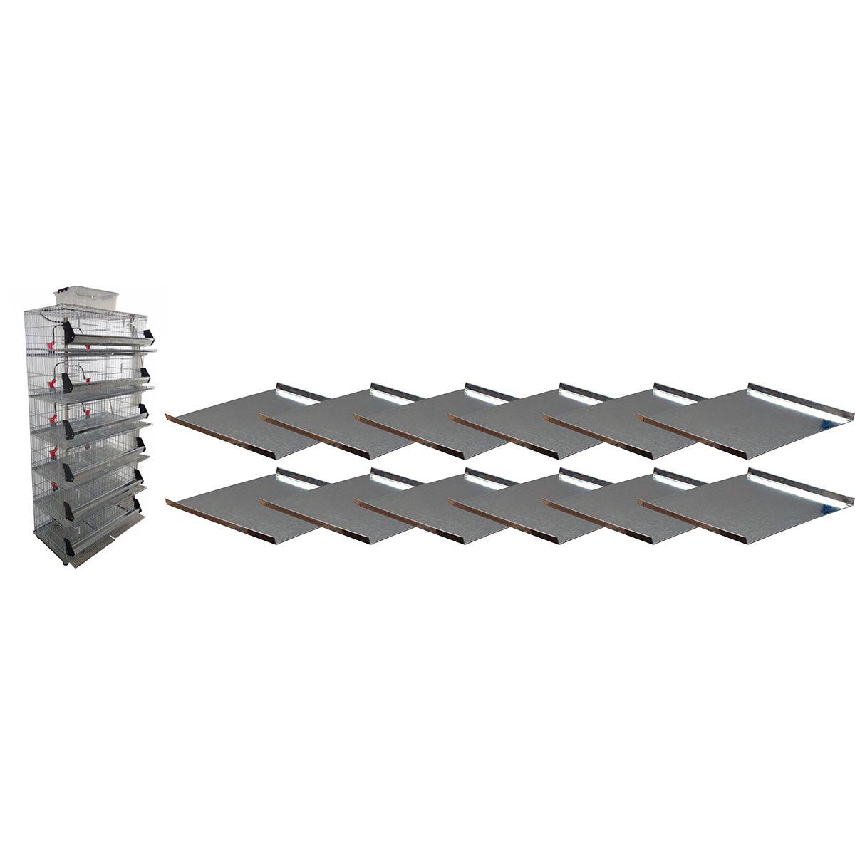 Kit com 12 bandejas - Bateria de 12 gaiolas para codorna