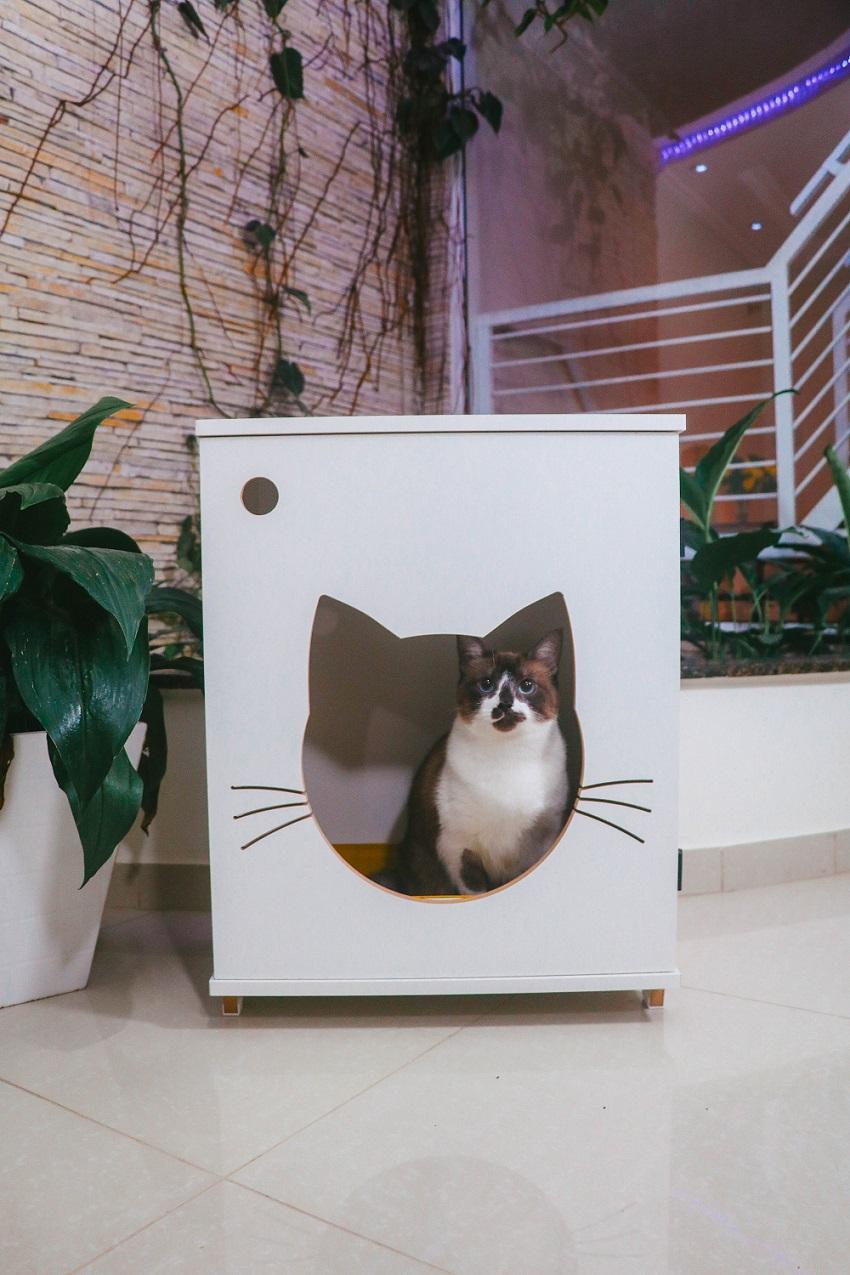 Sanitário banheiro gatos caixa de areia - Félix ChocMaster