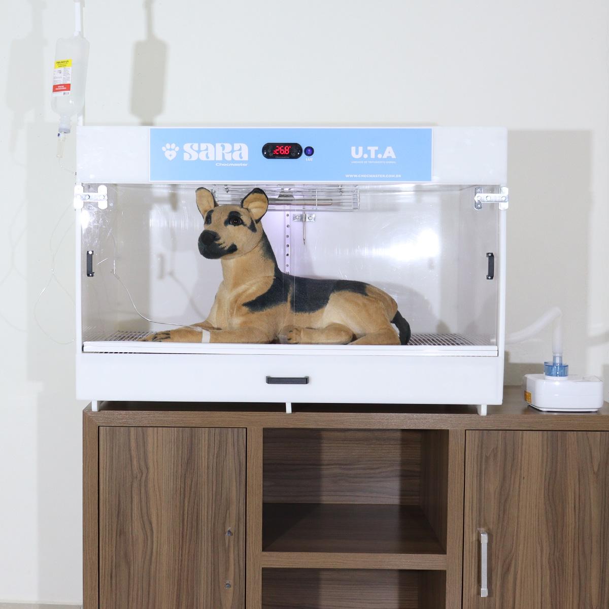 UTA Incubadora cães gatos veterinário hospital maternidade - modelo SARA