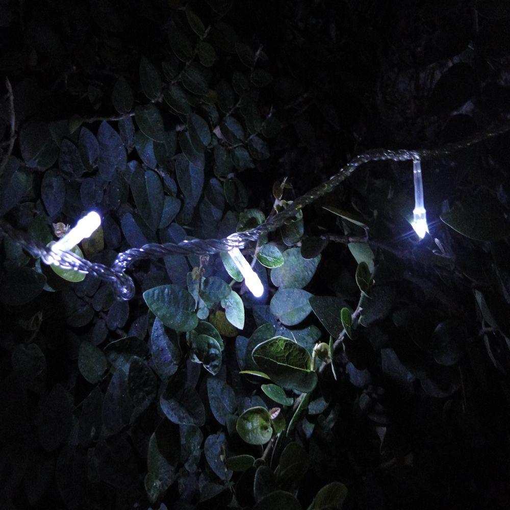 Pisca Pisca 100 LEDs 10m Branco 110v 4 Fases Fio Transparente 1039