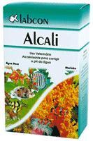 Labcon Alcali Industrial 100 ml
