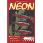 Livreto Neon (L) (Preço de Custo)