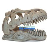 Soma Fish Esqueleto Dino T-Rex Skull Pq ( 054036 )