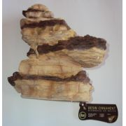 Soma Fish Arizona Rock N° 05 (Sand Stone)