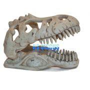 Soma Fish Esqueleto Dino T-Rex Skull Md ( 057326 )
