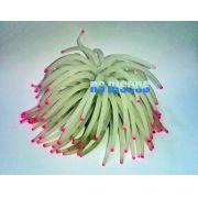 Soma Fish Coral Anemona branca 06 cm