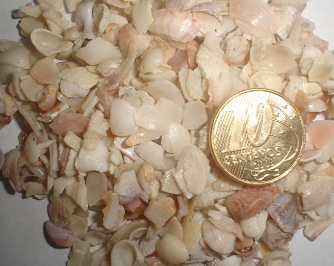 Cascalho de Concha Moida - 1kg.
