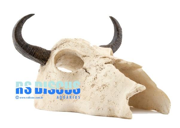 Soma Fish Esqueleto Cabeça de búfalo