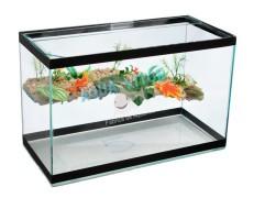 Aquaterrario 80X30X40