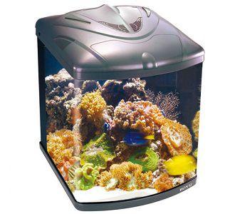 Boyu Aquario Zumbo TL-550 -  128L  220 V