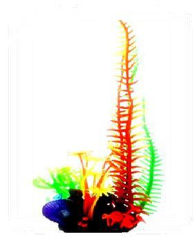 Soma Fish Coral Mix 12 ( 040015 )