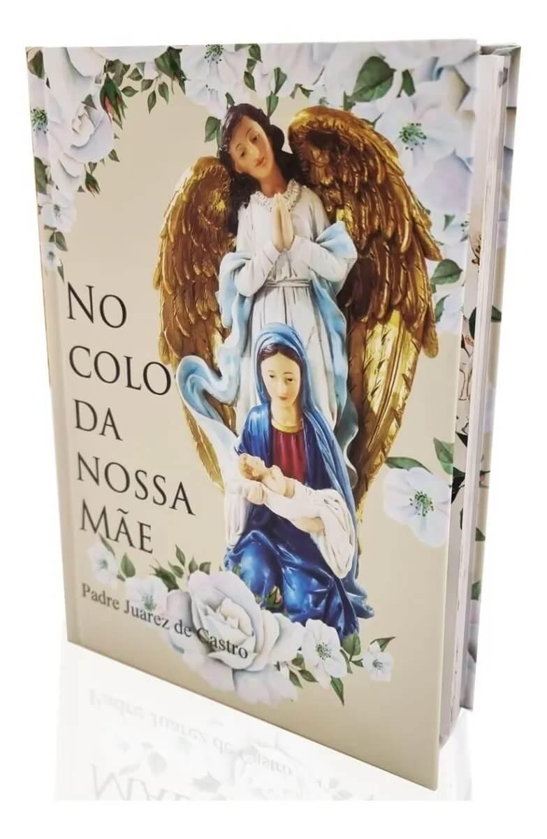 Livro No Colo Da Nossa Mãe - Padre Juarez De Castro