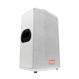 Gabinete para Caixa Acústica Falante 10 polegadas + Corneta driver SomPlus