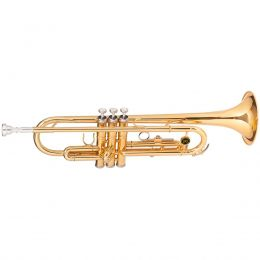 Trompete WTRM48 BB Duplo Dourado - Michael