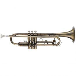 Trompete WTRM56 BB Escovado - Michael