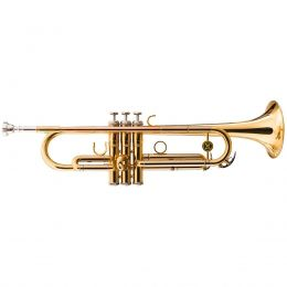 Trompete WTRM68 BB Duplo Dourado e Tubos em Alpaca - Michael