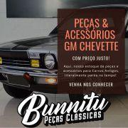 Grade do radiador para GM Chevette, Marajó e Chevy  1981 à 1982 - Lado do Passageiro