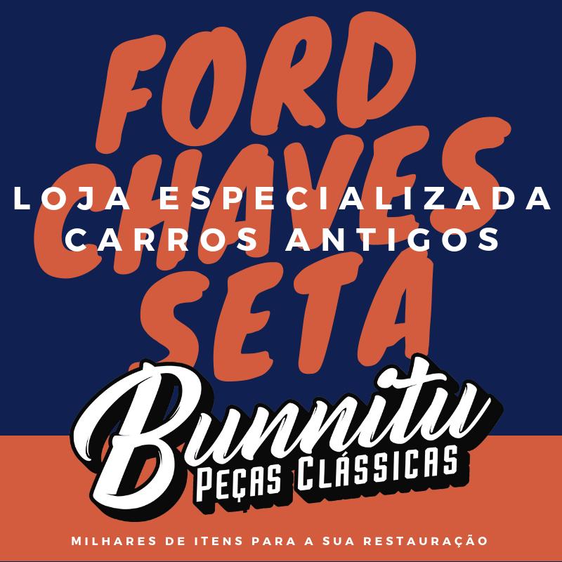 Haste da seta lampejador cromado para Ford Corcel até 1977, Maverick e Galaxie  - Bunnitu Peças e Acessórios