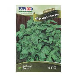 Semente ervas manjerica/alfava c20