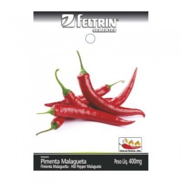 Semente h.pimenta malag feltrinc25