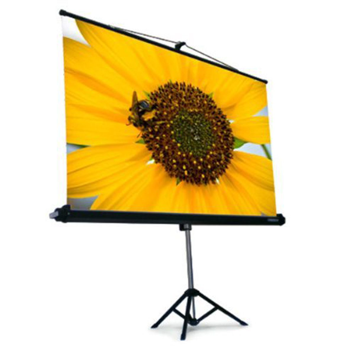 TELA PROJEÇÃO TRIPE TBTPS72V (147x110cm) 4:3 Trace Board